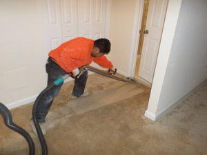 Mold-Restoration-Expert-Cleaning-Carpet